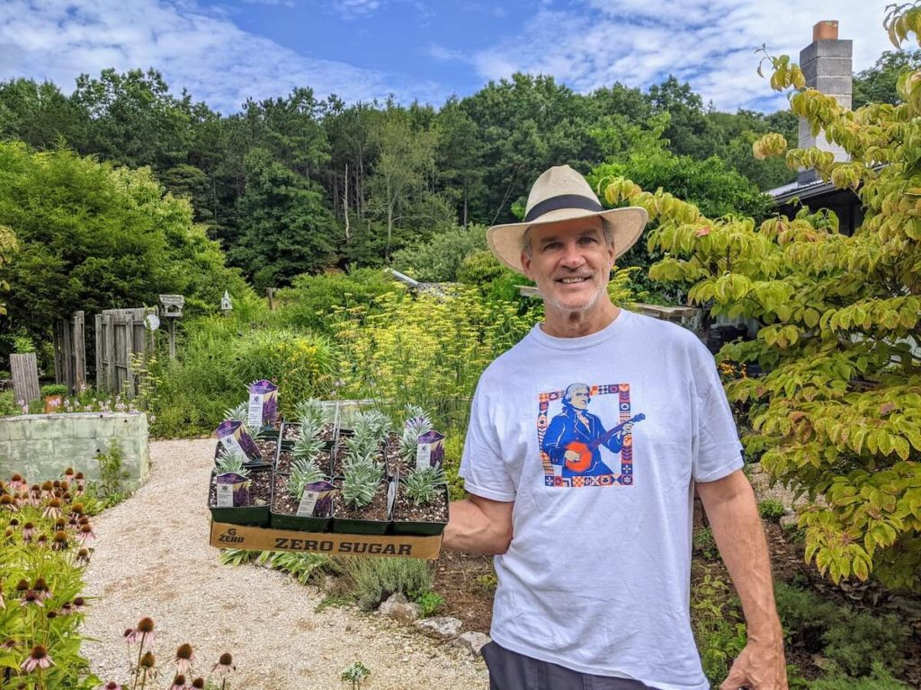 Chris schoder with a tray of lavender at Beagle Ridge Herb Farm